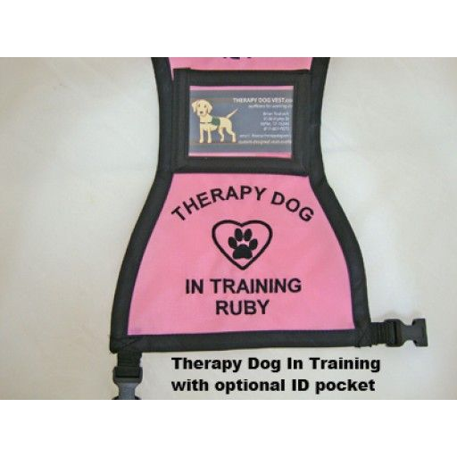 Therapy Dog In Training Vest Therapy Dogs Dog Training Vest Dogs