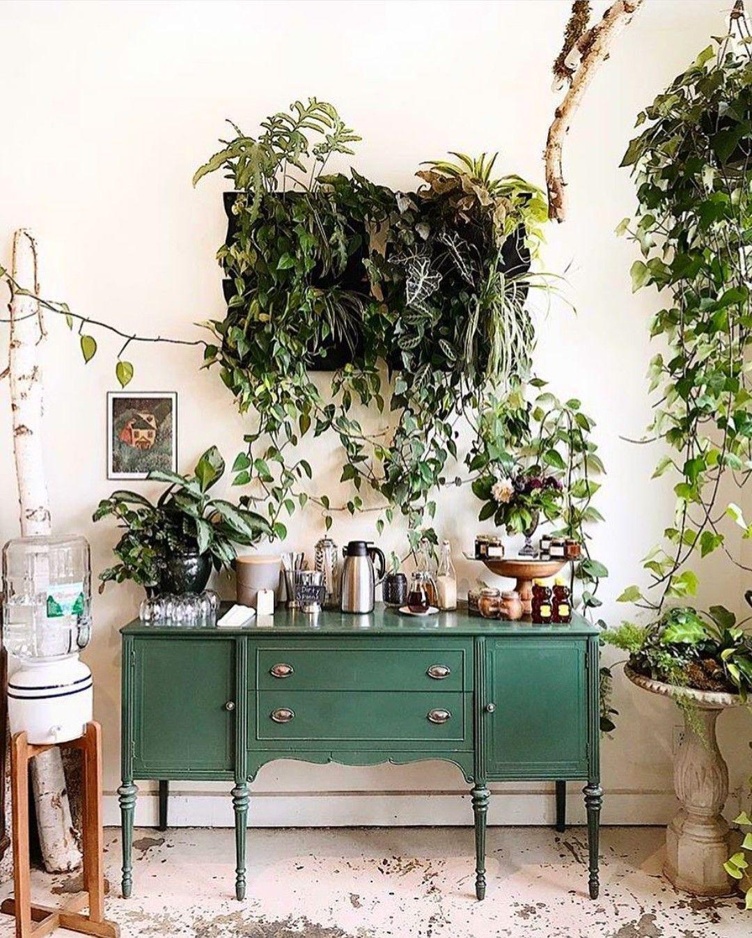 Grünes Sideboard und Pflanzen | Green | Pinterest | Grün, Paar und ...