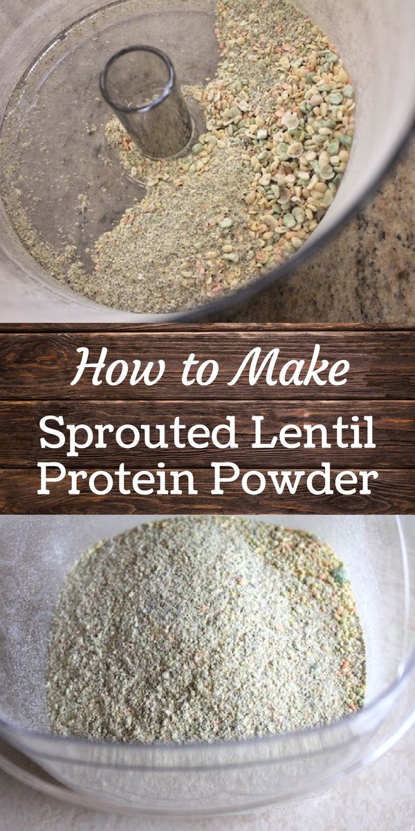 Homemade Sprouted Lentil Protein Powder (Vegan, Dehydrated) - Clean Eating Kitchen
