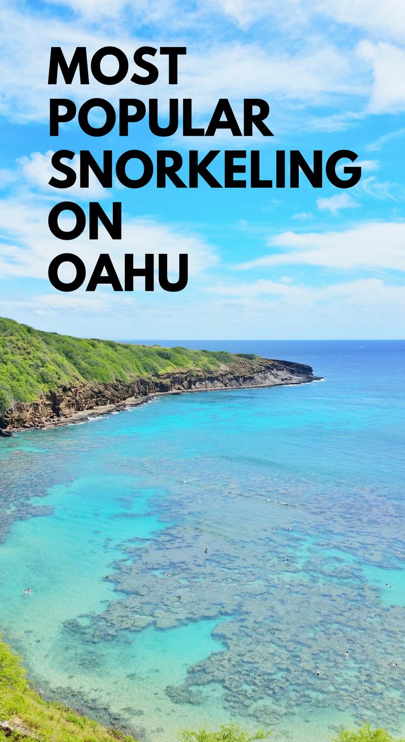 hanauma bay snorkeling faq of best snorkeling spot on oahu rh pinterest com