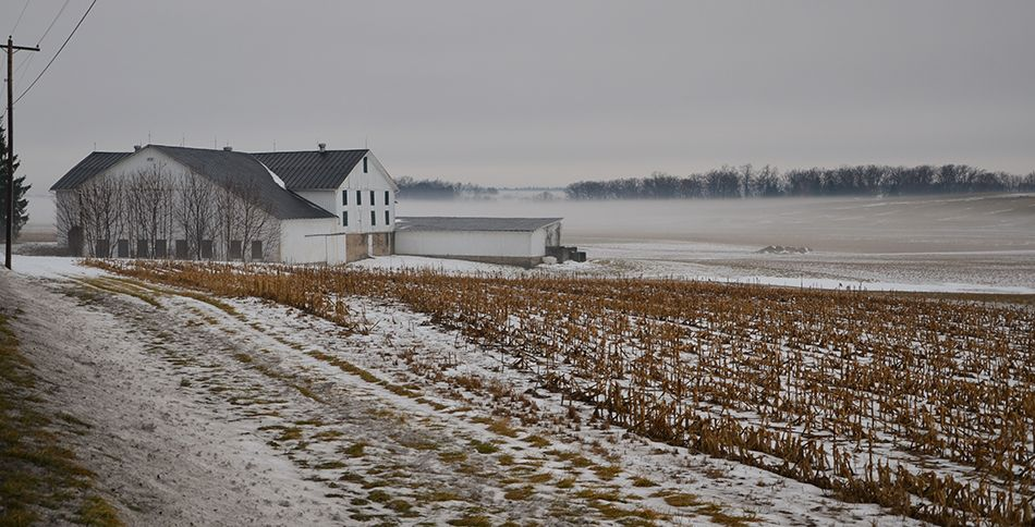 1/29/13 Penn State Ag Research Area along Route 45