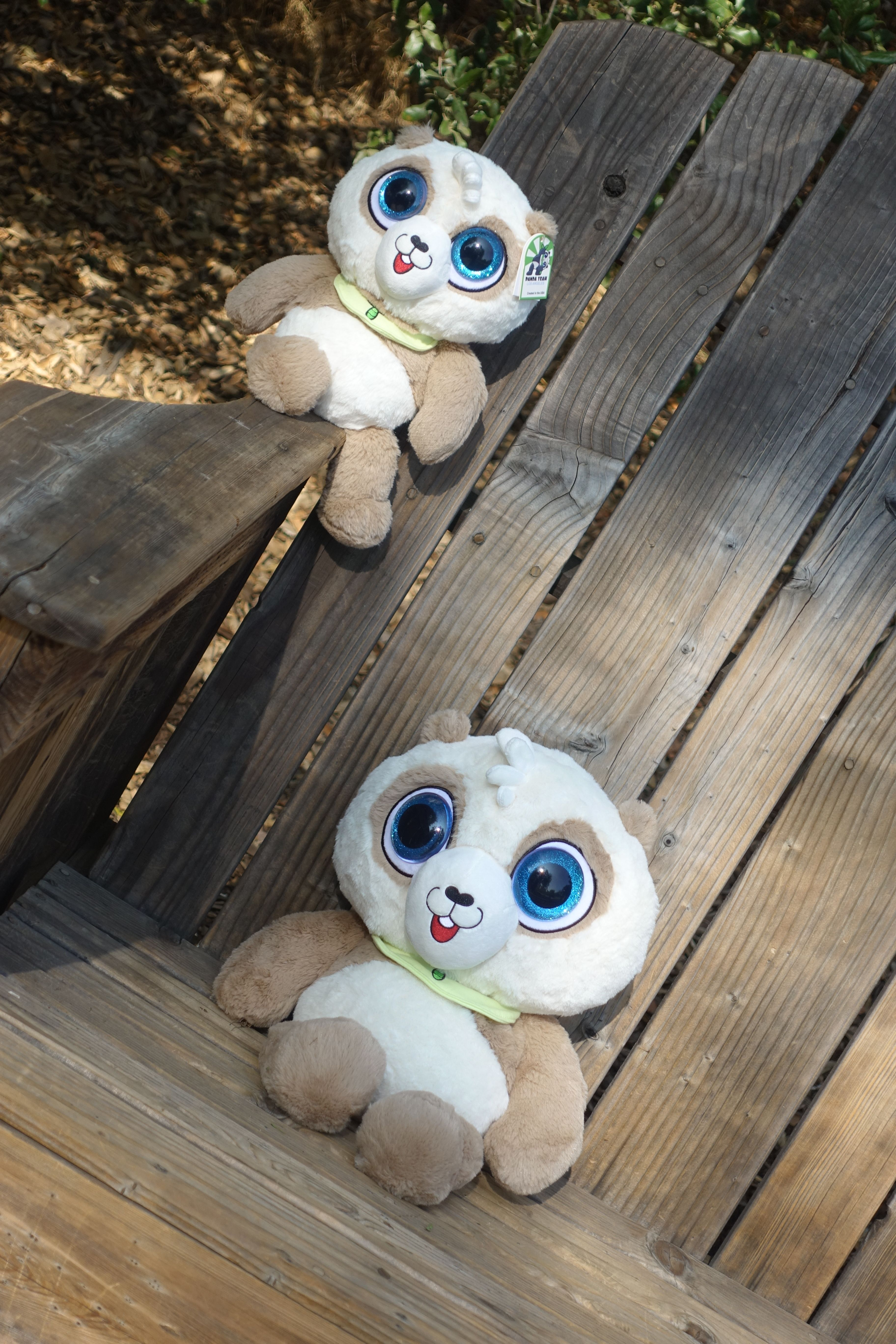 Toffy Panda small and Toffy Oanda Big!!! Come get one here