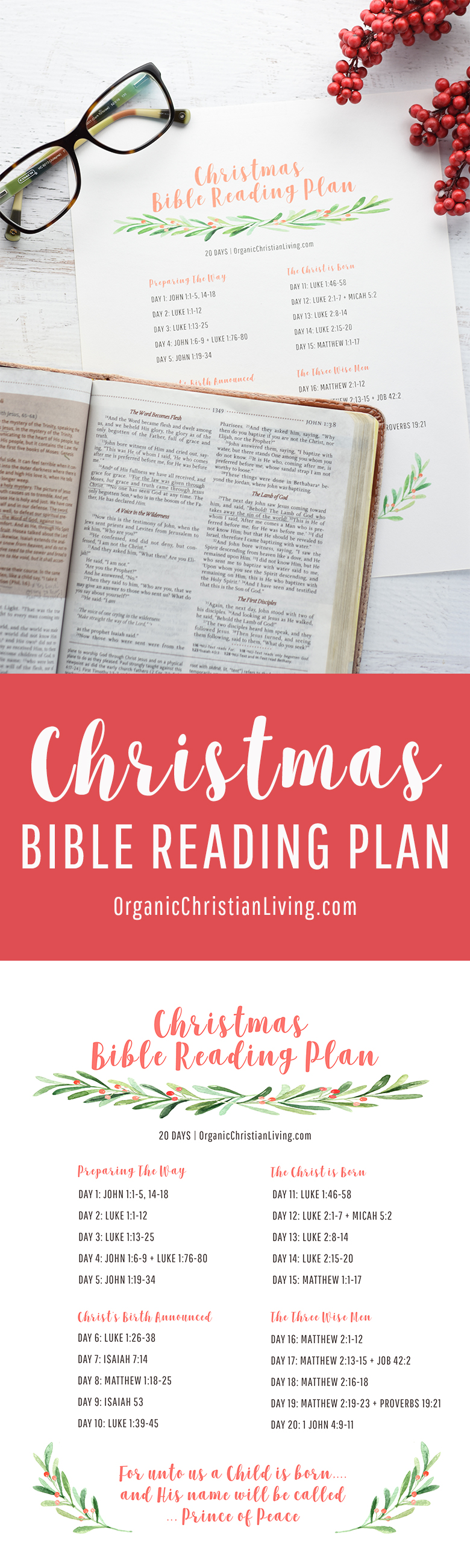 Christmas Bible Reading Plan | Bible Lessons | Bible Studies for ...