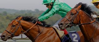 Mary Ann Bernal: The Wizard of Notts Recommends: Dubai Duty Free saddles up for annual Shergar Cup racing event 10 August 2013