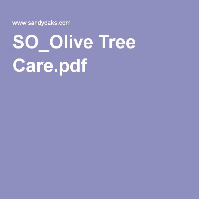SO_Olive Tree Care.pdf