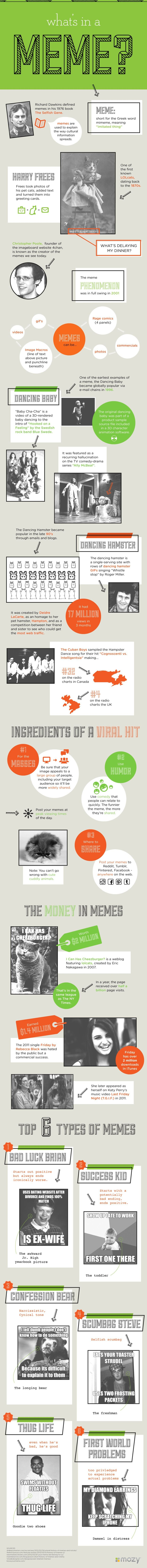What's In a Meme? What makes a Viral Hit? #Infographic #infografía