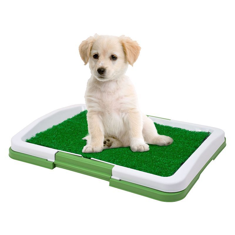 Paw Puppy Potty Trainer Indoor Restroom For Pets Multicolor