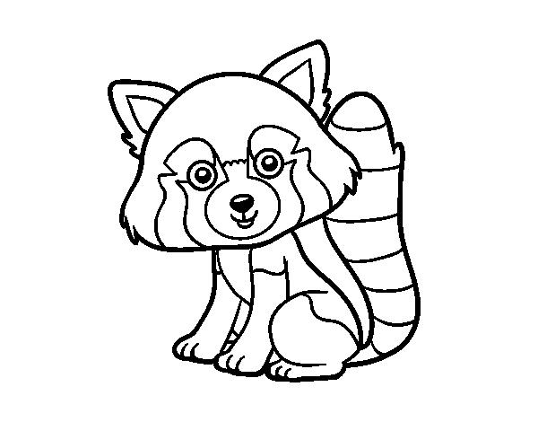 Disegno Di Panda Rosso Da Colorare Stampare O Scaricare Colora