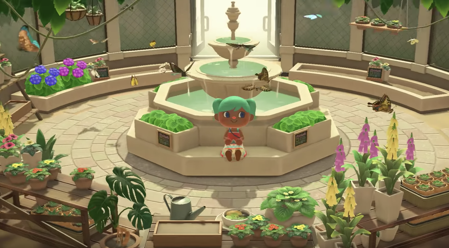 Butterfly Room In The Museum In Animal Crossing New