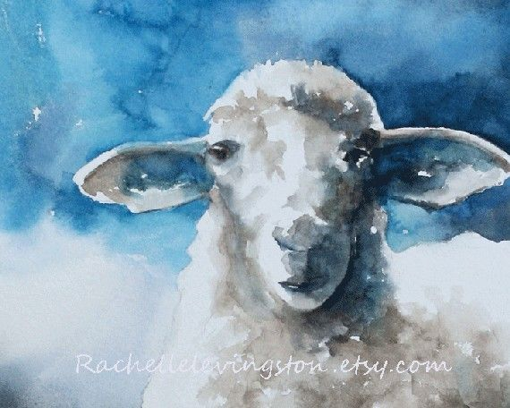 SHEEP PRINT from my watercolor painting 11 x by rachellelevingston, $25.00