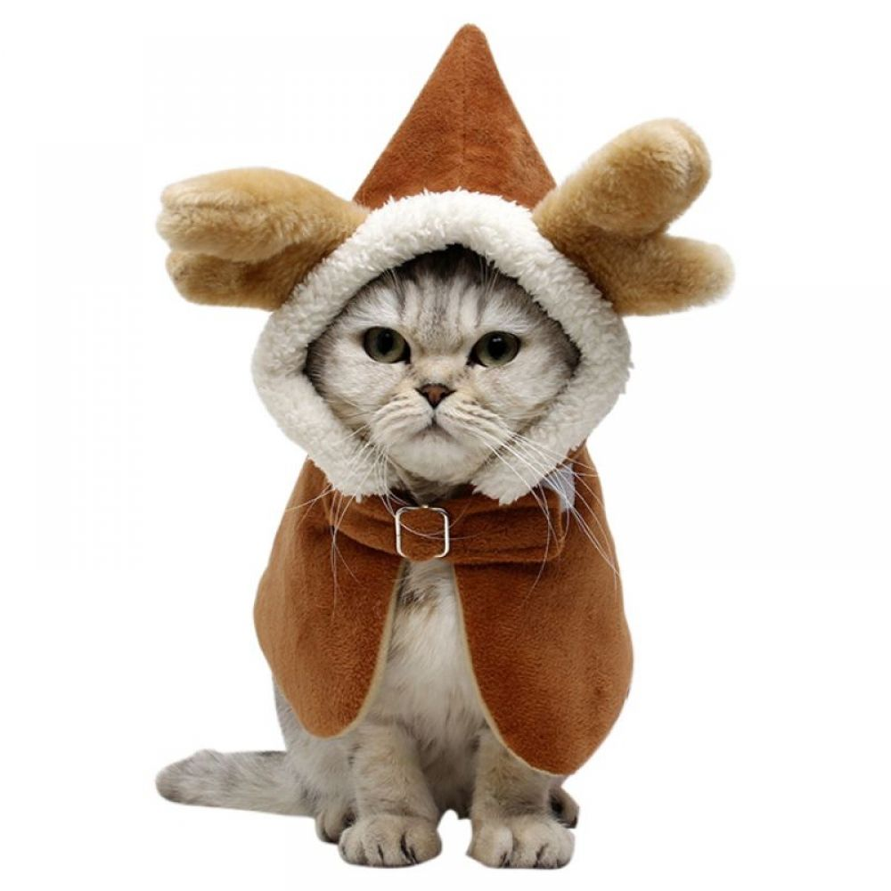 Pet Cat Kitten New Year Hooded Costume Chinese Style Clothing Hooded Jacket Spring Festival Dragon Velvet Cloak Petnr Cats And Kittens Pet News Cat Clothes