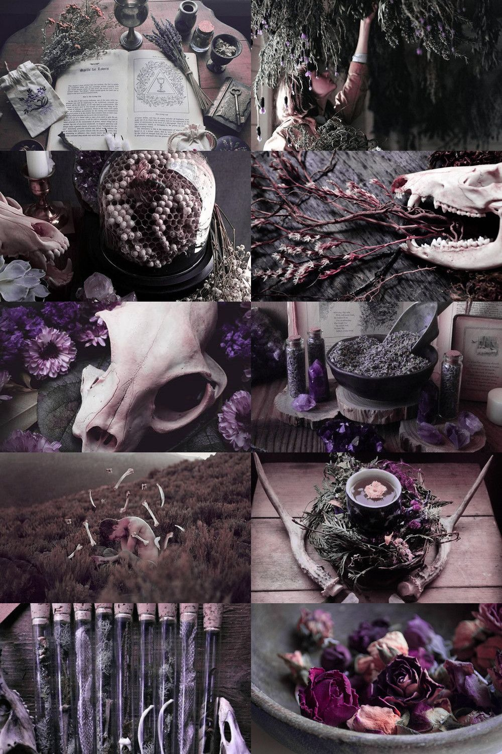 Herb and Bone Witch Witch aesthetic, Witch, Book of shadows