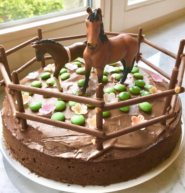 22 Luxus Kuchen Kindergeburtstag Pferd Kinder Kuchen Junge Inspirierend Kinderkc… – Kindergeburtstag ideen