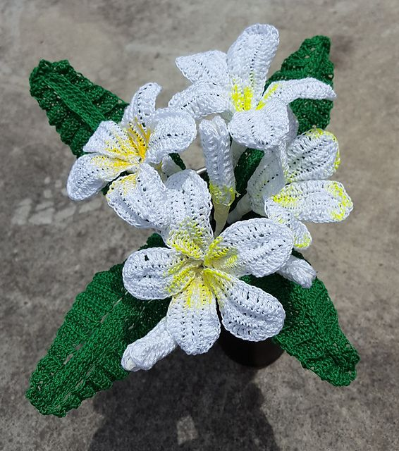 Hawaiian Crochet Flower CAL 2017 Frangipani Plumeria   My Knit ...