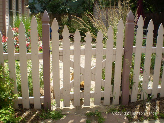 Wood French Gothic Picket Fence With Gate Front Yard Fence Wood Picket Fence Picket Fence