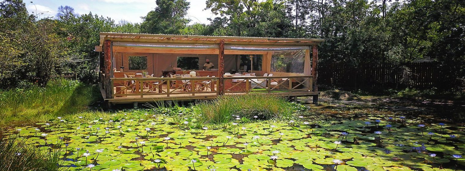 Lily Pond Deck Honeymoon cottages, Luxury cottage