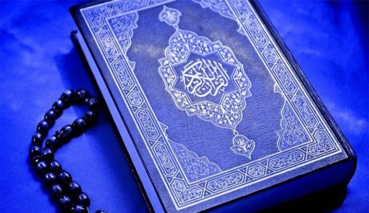 أبرز 5 تطبيقات تلاوة القرآن الكريم عبر هاتف الأندرويد أو الآيفون عربي تك Quran Recitation Learn Quran Quran