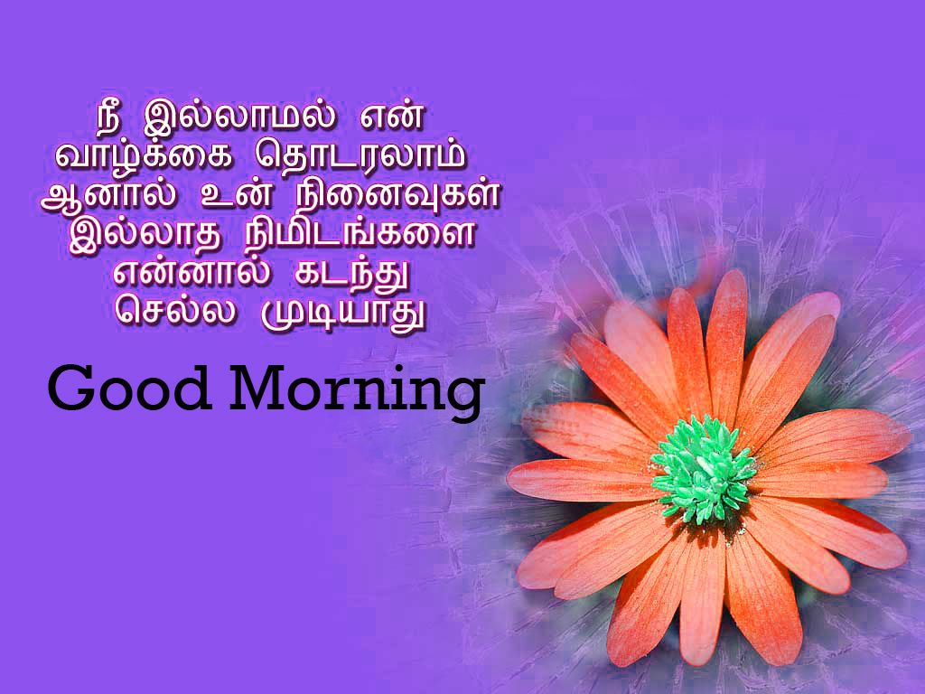 Tamil Good Morning Images 145+ Good Morning Tamil Kavithai Wallpaper Photos  Pictures P… | Good morning images, Good morning photos, Motivational good  morning quotes