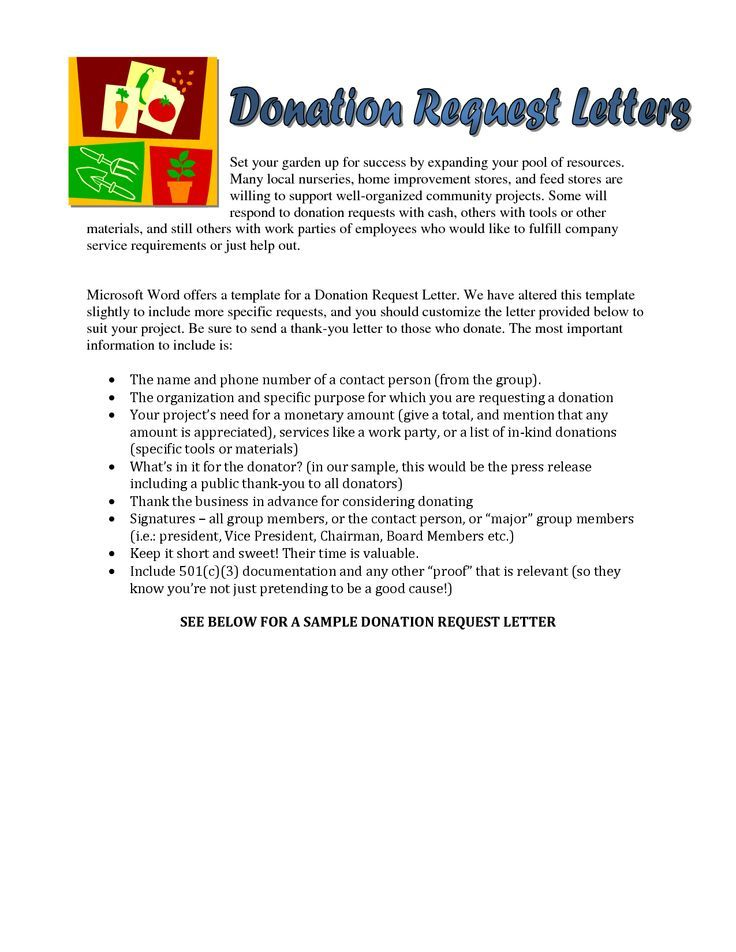 Sample Donation Request Letter For Food With Lucy Charity