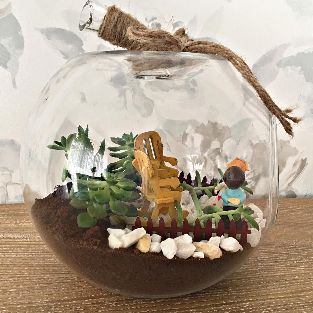 Perfekt Bu şirin şeyden Sipariş Vermek Isteyenler Iletişime Geçebilir    #terrarium  #teraryum #çiçek
