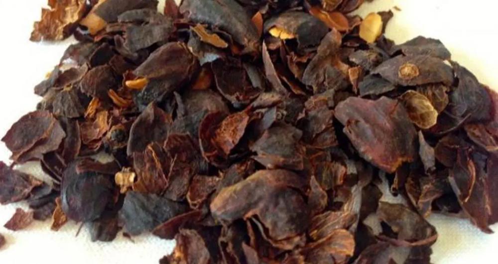 قشر القهوه للدورة الشهرية الخاصة بالنساء مع طريقة الإستفادة منها Chocolate Coffee Peel