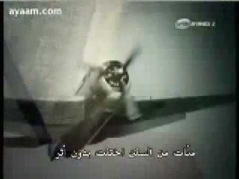 فيديو اسرار وحقيقة مثلث برمودا مثلث الرعب مثلث الشيطان جريدة مصر نيوز اونلاين Cats Animals