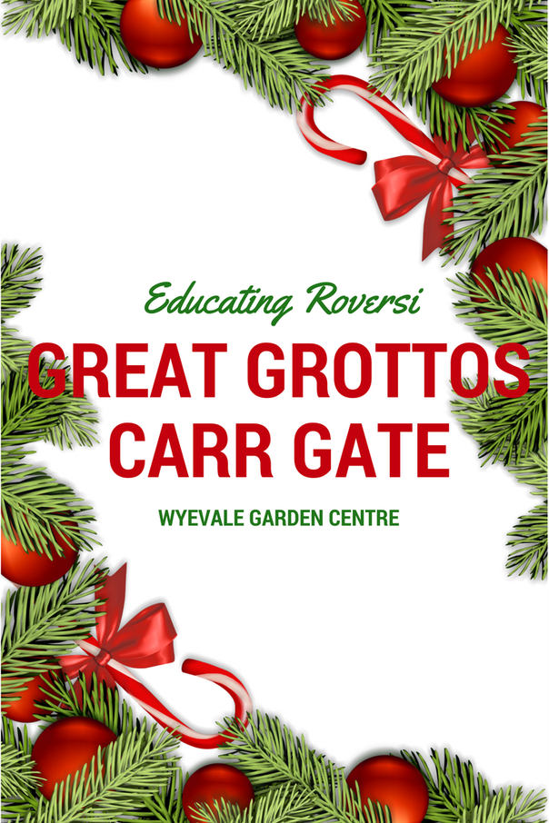 Review Great Grottos At Carr Gate Wyevale Garden Centre