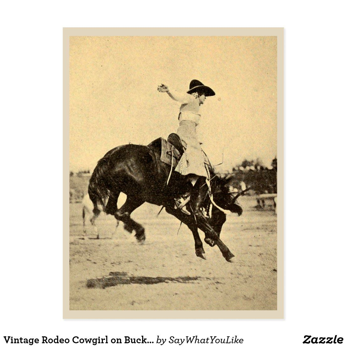 Vintage Rodeo Cowgirl On Bucking Horse Photo Postcard Zazzle Com Rodeo Cowgirl Photo Postcards Horse Photos