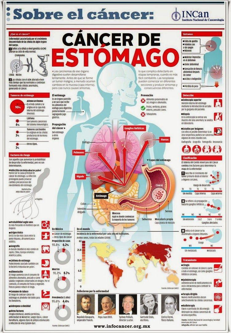 Pin de Kari en Salud | Pinterest | Estomago, El cancer y Infografía