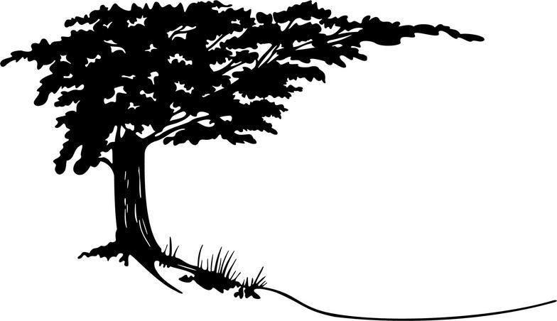 3d029fce2 Cypress Tree Clipart | trees | Cypress trees, Tree clipart, Tree decals