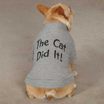 Dogs And Cats Living Together Mass Hysteria Lol Tee Shirt