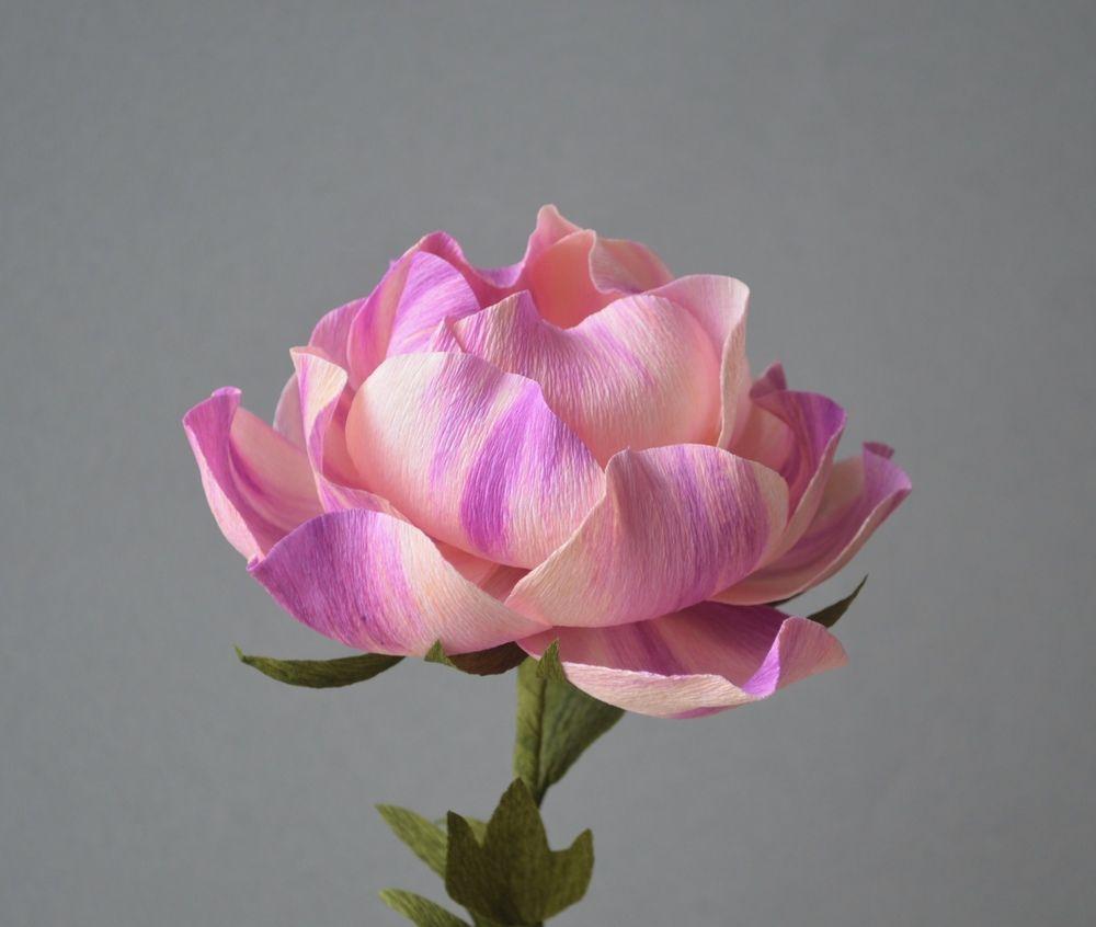 Handmade Crepe Paper Flowers Flower Making Pinterest Crepe