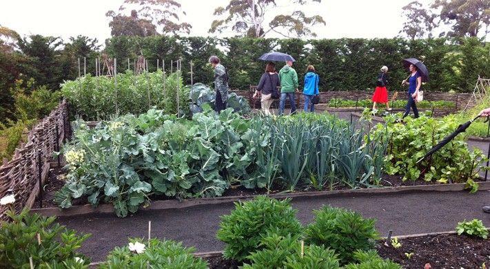 Pinterest Kitchen Gardens News Kitchen Garden Country