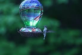 Resultado de imagen para el mundo magico del colibri