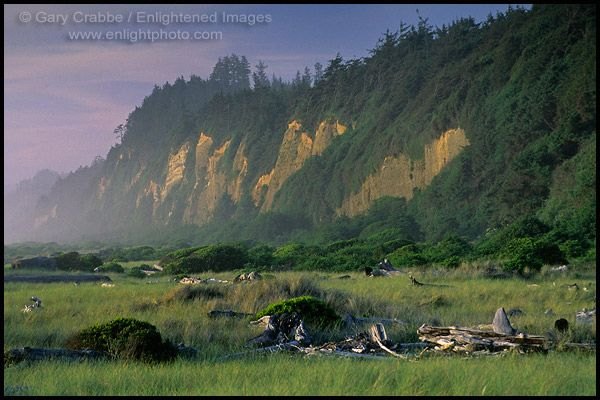 Camping Here Was Spiritual Gold Bluffs Beach In Northern California