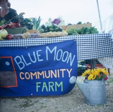 10 tips for selling at a farmer's market | Living the Country Life