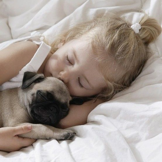 Temperament And Personality Of Pugs Girl And Dog Pugs Sleeping
