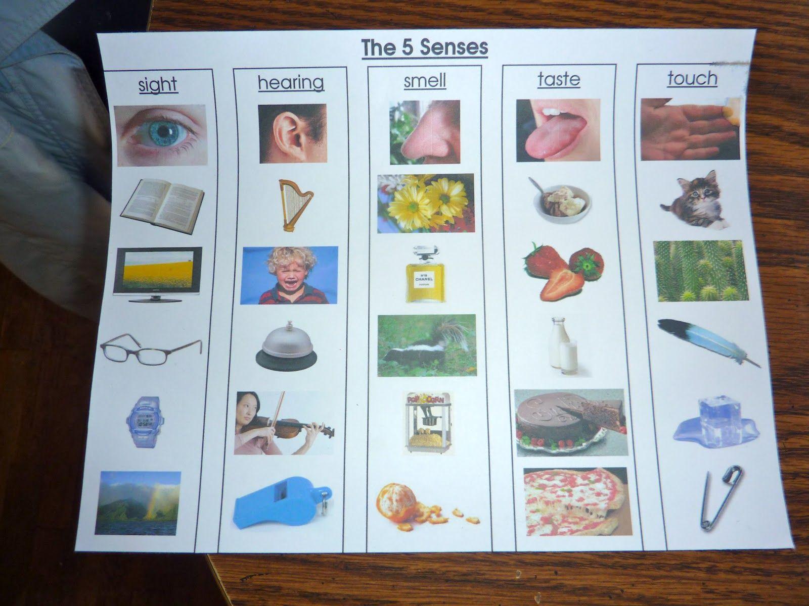 Senses Craft Kindergarten