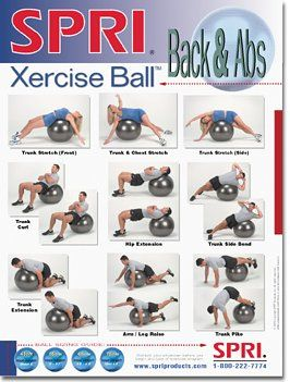 spri lower body xercise ball wall chart http//www