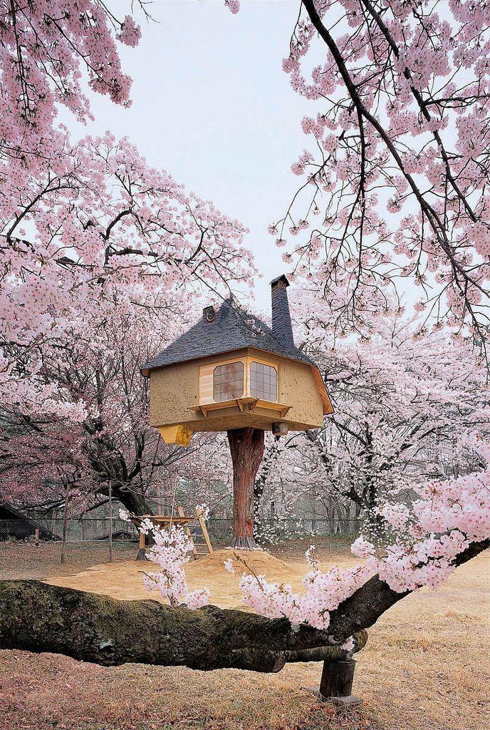 Fairy Tale Treehouse Hovers Amid Cherry Blossom Trees Maison Dans Les Arbres Cabane Dans Les Arbres Cabane Bois