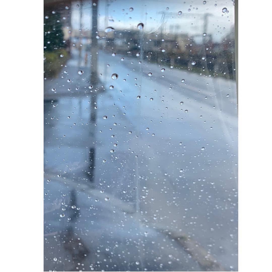 @梨花 Rinka: . 朝から雨 わりと強い雨 そうだ 11月はハワイの雨期 週間天気予報を見る限りマークばかり 明日 ...