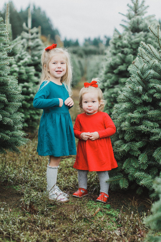 Christmas Tree Farm Richmond Va