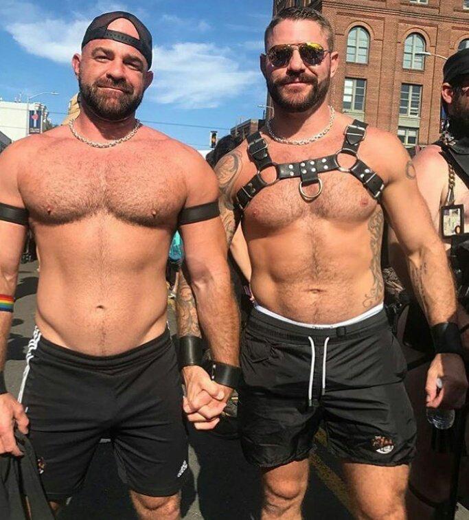 bruce Bears gay