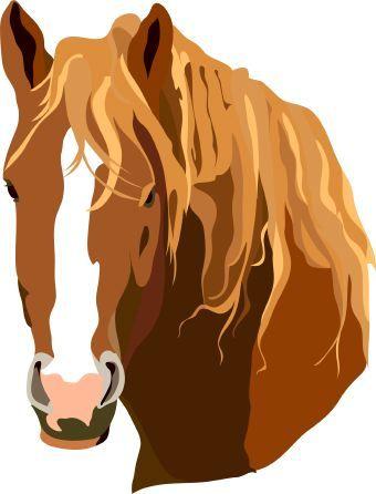 Horse Clip Art Horse Clip Art Horse Clipping Clip Art