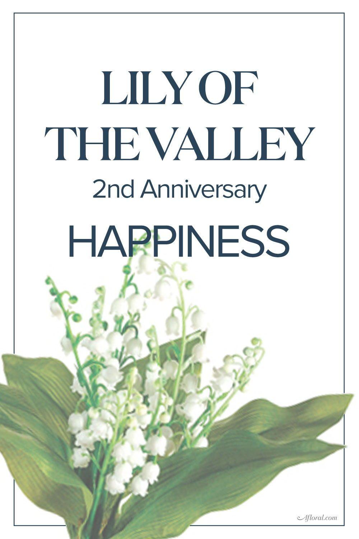 2nd Wedding Anniversary Flower Anniversary Gifts Year Anniversary Gifts Anniversary