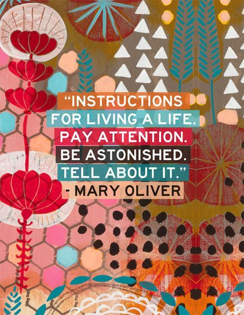 30 Best Mary Oliver Quotes And Poems You Need To Know
