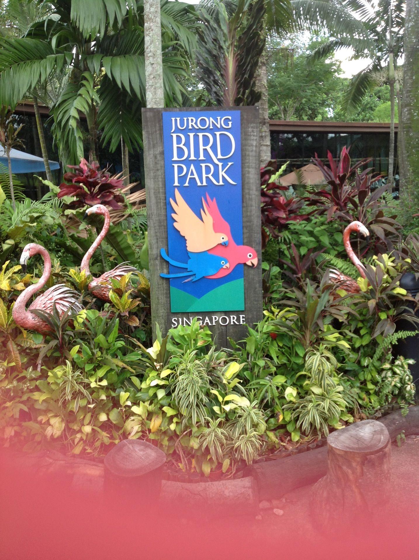 Jurong Bird Park in Singapore