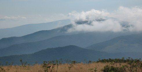 Roan Mountain, Tennessee USA