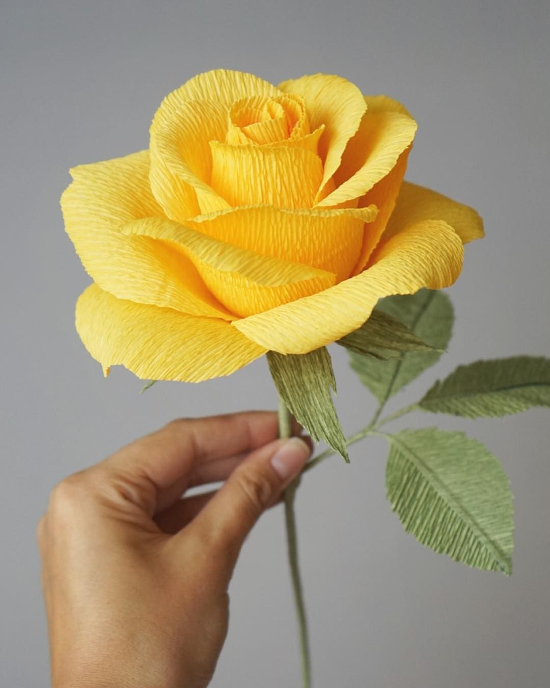 How do you like our new crepe paper rose?