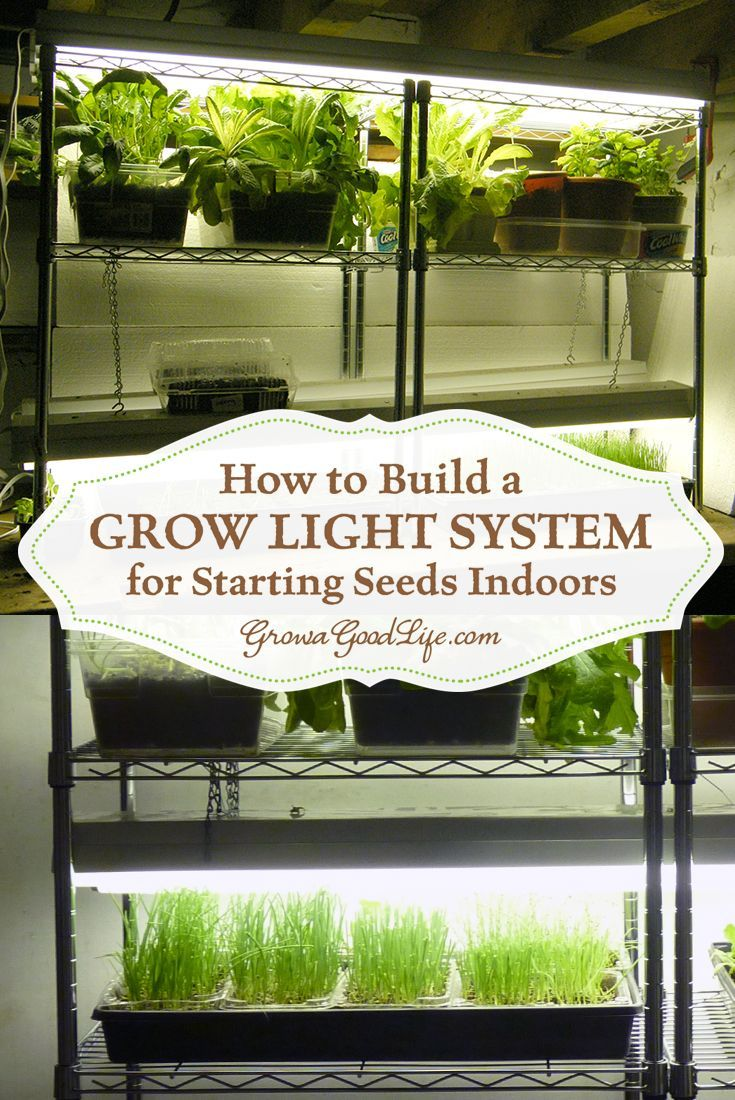 build a grow light system for starting seeds indoors lighting